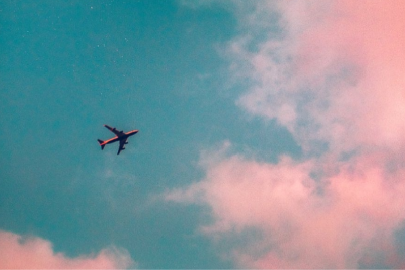 Gays Flying South Indicates End Of Pride Season