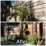Fence Staining and Waterproofing