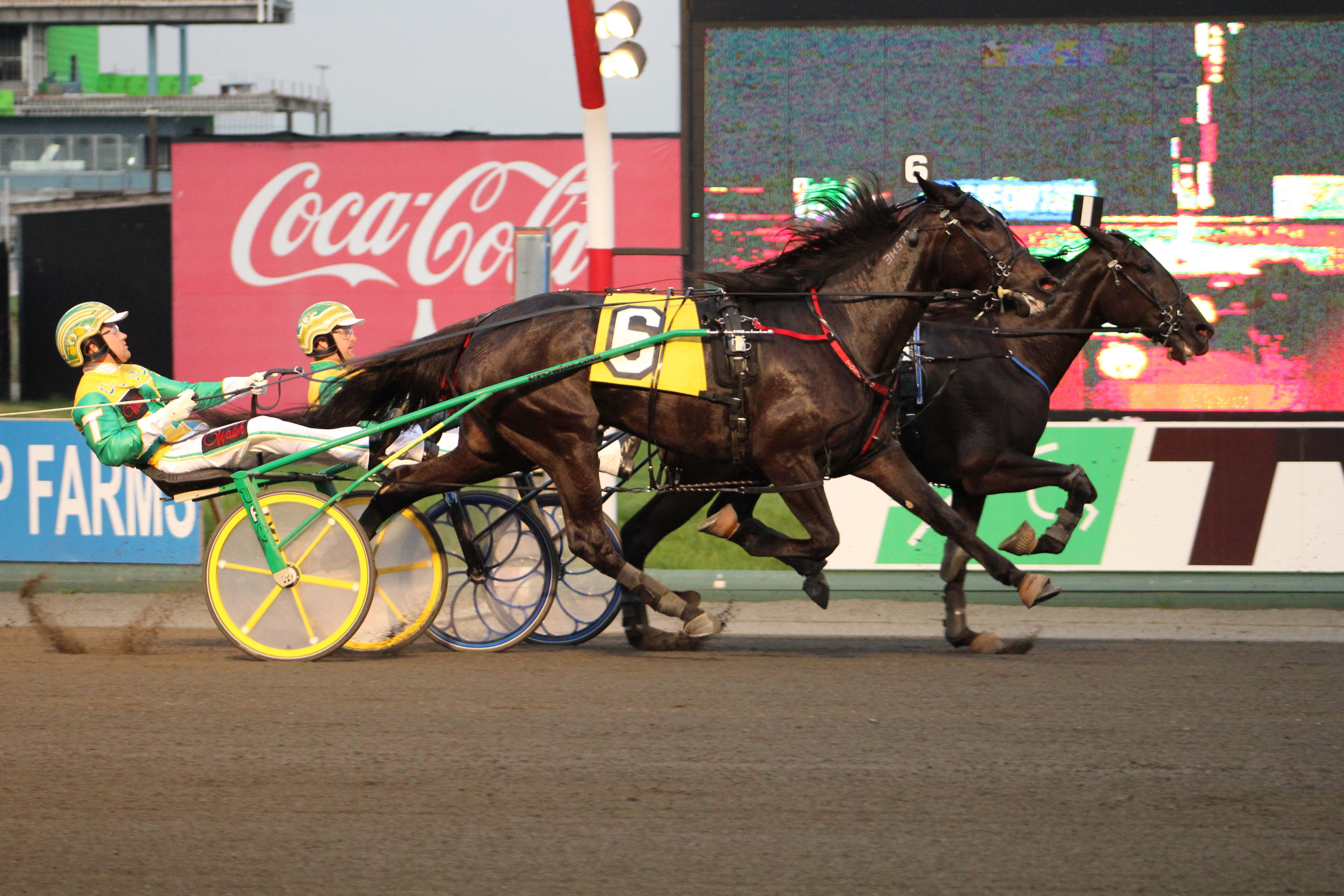Southwind Cocoa at the wire