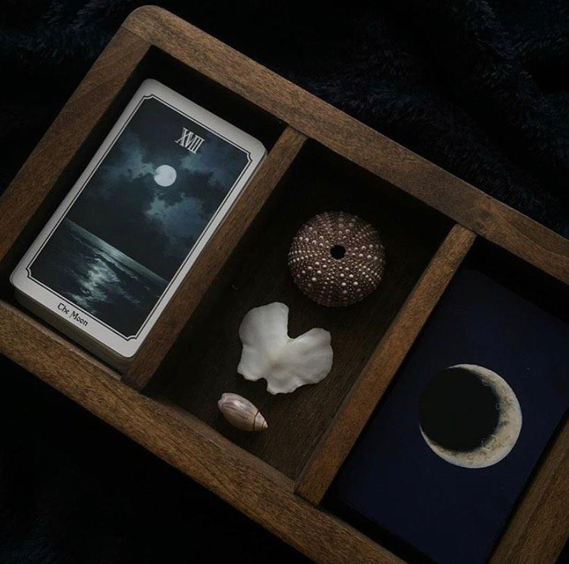 Nocturna Oracle Deck Black Moon Botanica