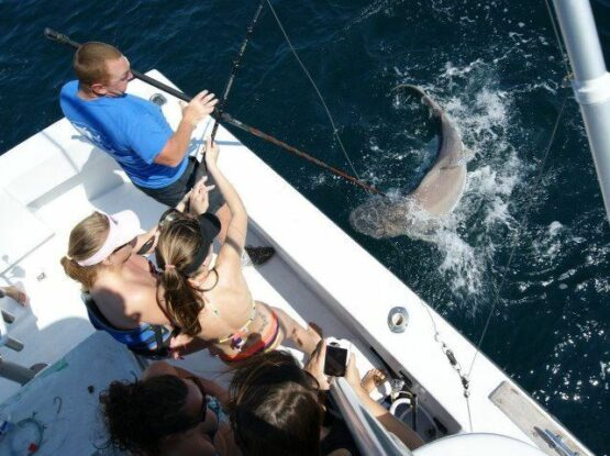 Charter Fishing in Orange Beach