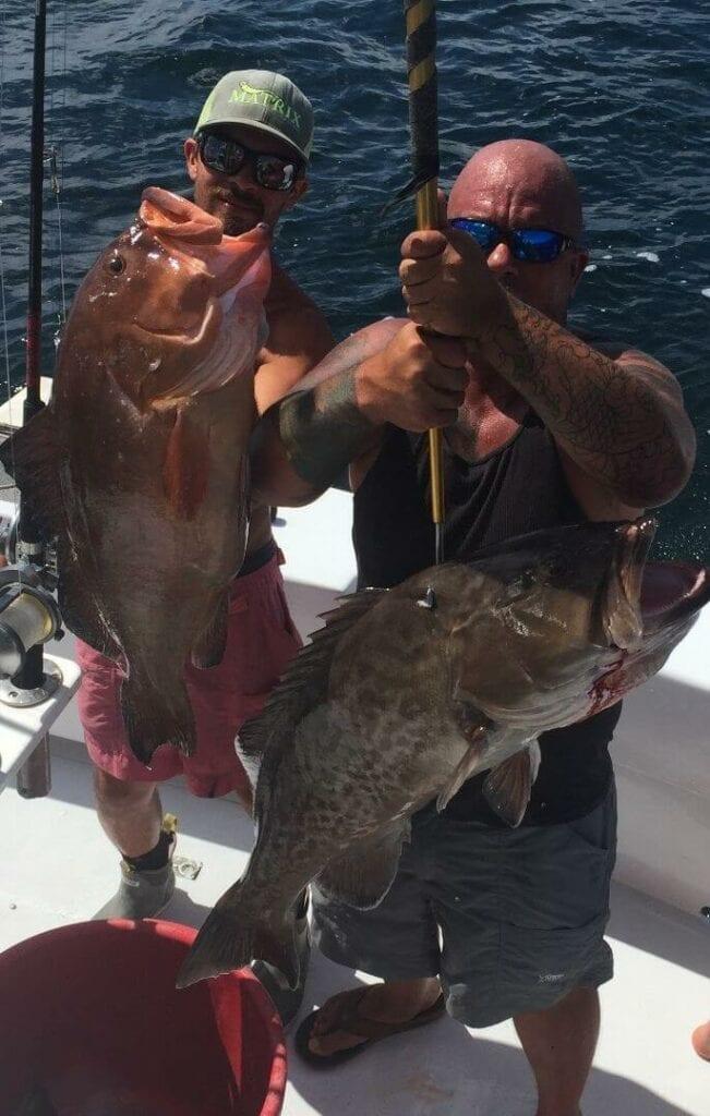 fishing orange beach grouper
