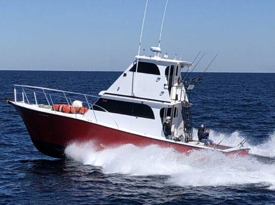 Orange Beach Fishing Charter