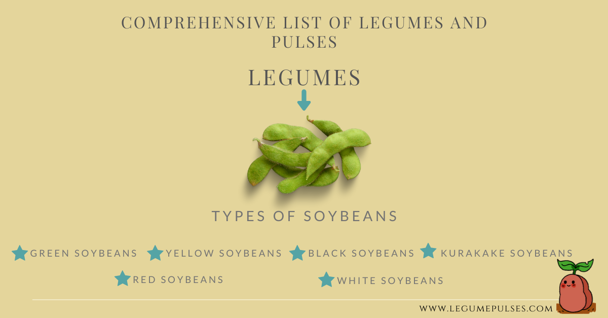 Comprehensive of legumes. This graphic shows the different types of soybean.
