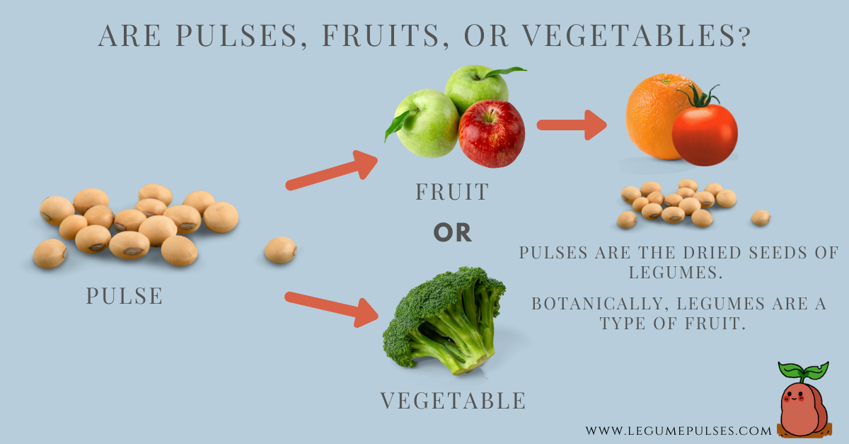 Are pulses, vegetables, or fruits?