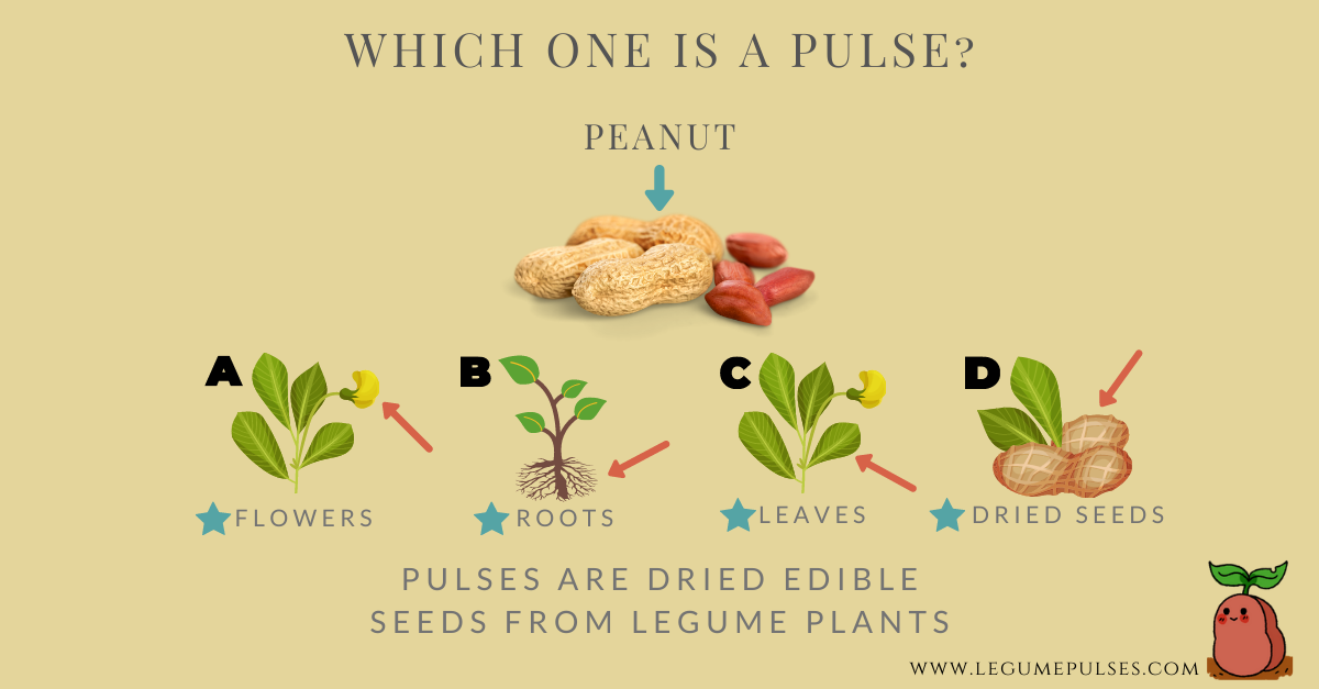 How to identify a pulse?