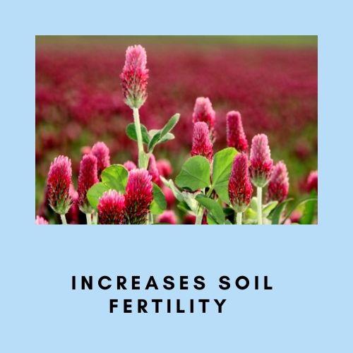 Increase soil fertility naturally