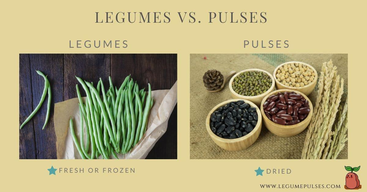 Legumes vs. Pulses