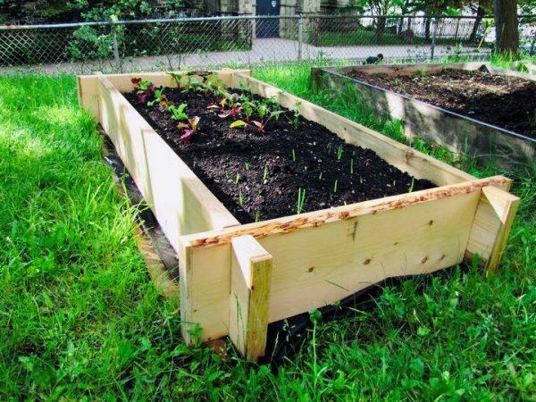 Garden Boxes Now Available!
