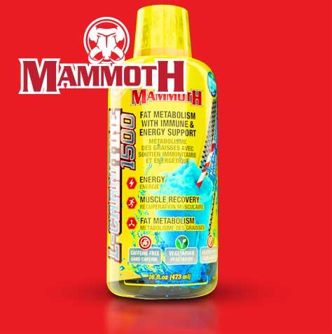 Mammoth L Carnitine 1500