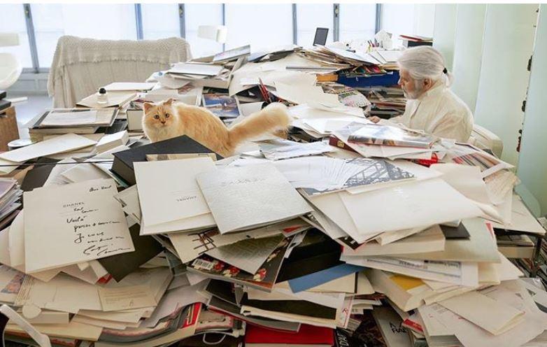 Karl Lagerfeld resale items