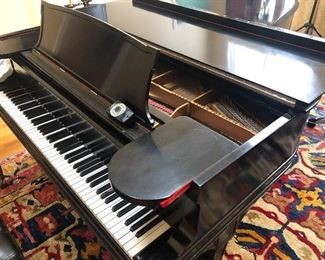 Steinway Piano owned by Larry Edoff