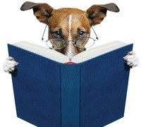 """Meet the Dogs from """"Tales for Tails"""" July 12"""