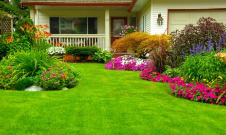 """Prevent High Water Bills with """"Water My Yard"""""""
