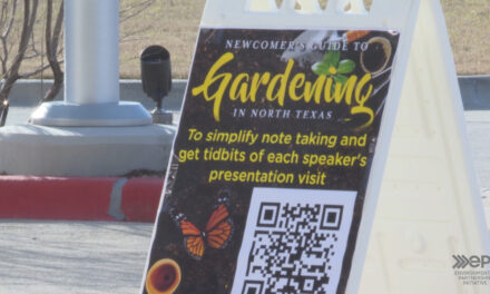 Newcomers guide to gardening in north texas