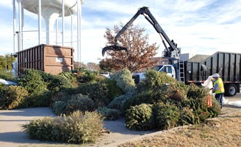 Tree Cycling Drop-Off Ends Feb. 1