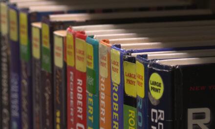 Summer Reading Program Continues Online