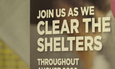 """Clear the Shelter"" Event Clears Shelter to Lowest Levels in Memory"