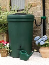 Time to Make a Rain Barrel—Free Online Class Sept. 8