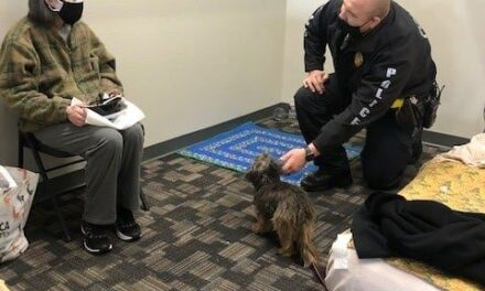 richardson police perform welfare checks