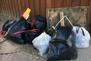 Walkers Help Clean Up Neighborhood, Breckinridge Park
