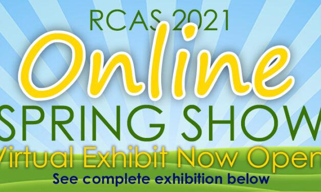 Richardson Civic Art Society Spring Show Online through April 10