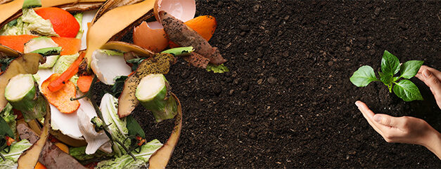 Free Online Composting Class Saturday