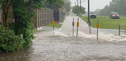 City Responds to Heavy Rains