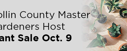 Collin County Master Gardeners Host Plant Sale Oct. 9