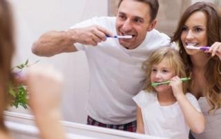 Conoce los tipos de dientes