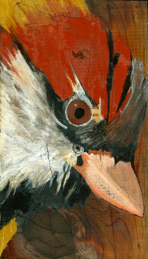 franne lee birds