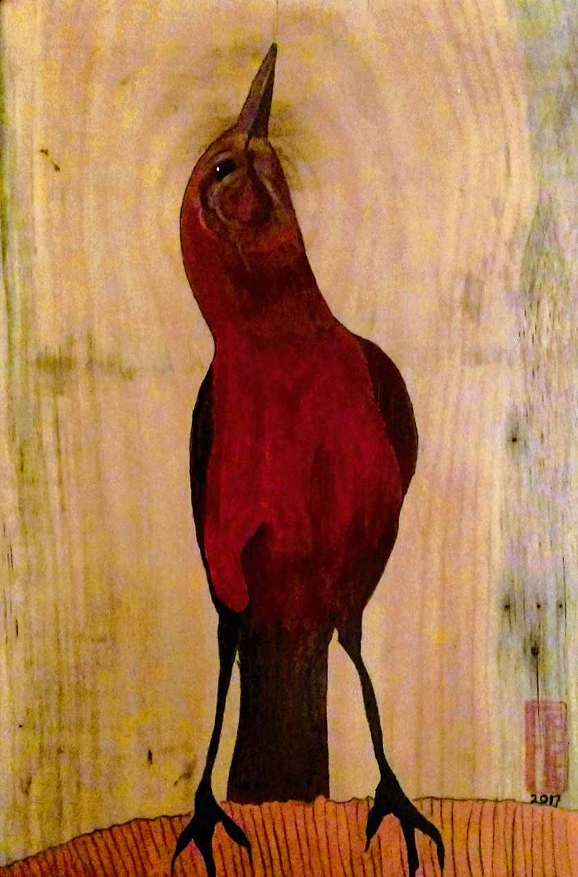 franne lee beach bird