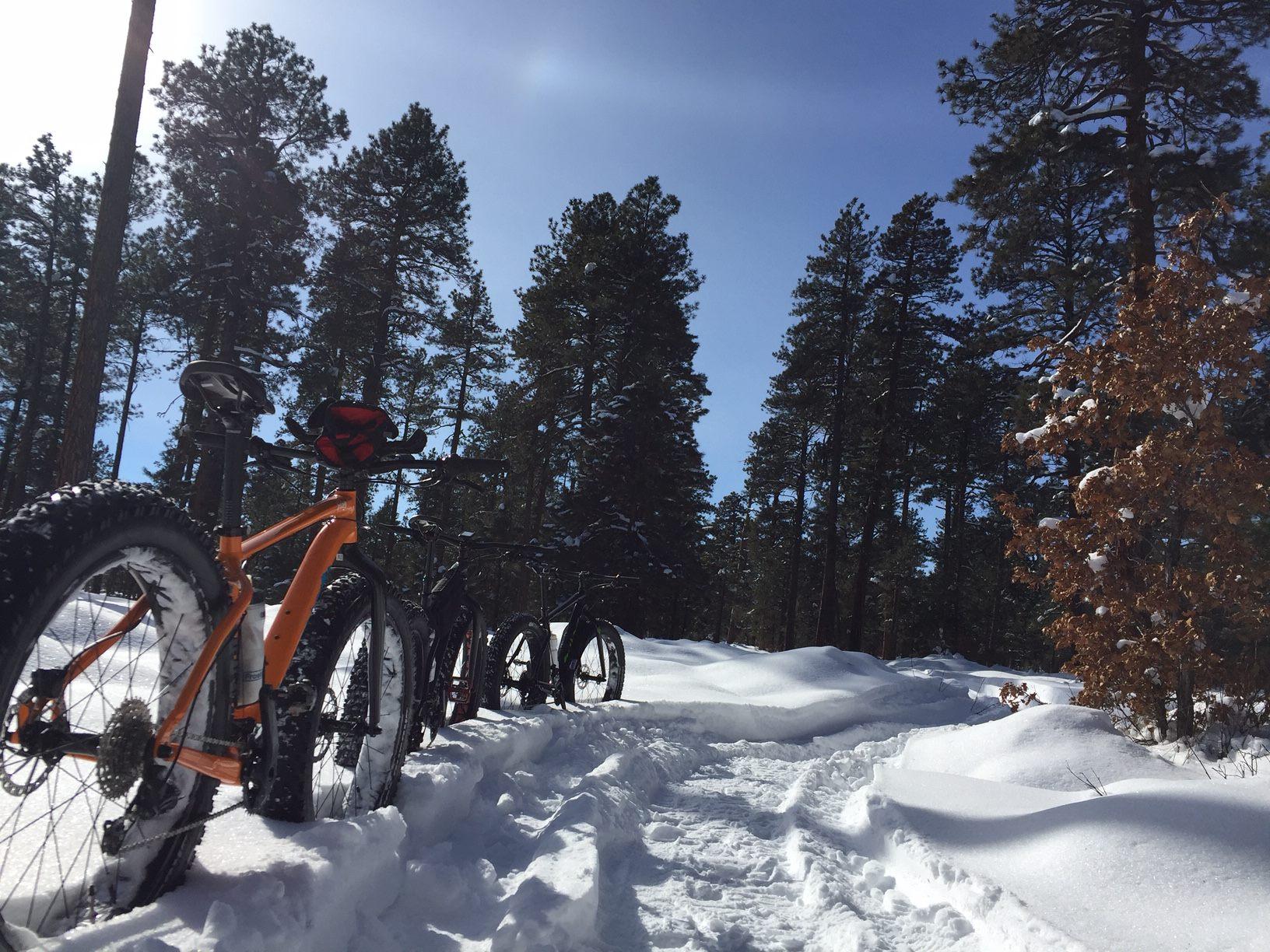 pms-fat-bikes