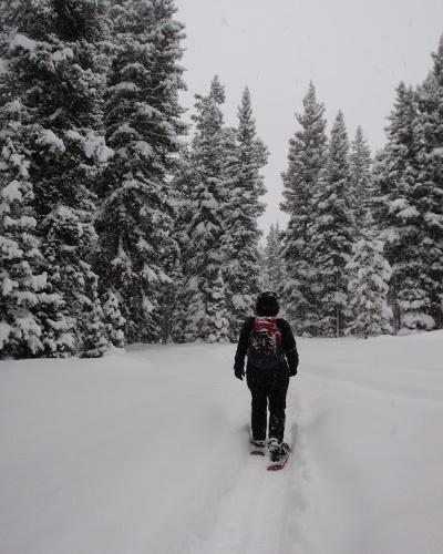 snowshoer-out-400x500