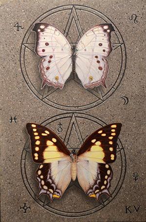 Kelley Vandiver - Watercolor - Butterflies 2