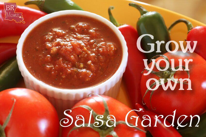 Grow your own salsa garden