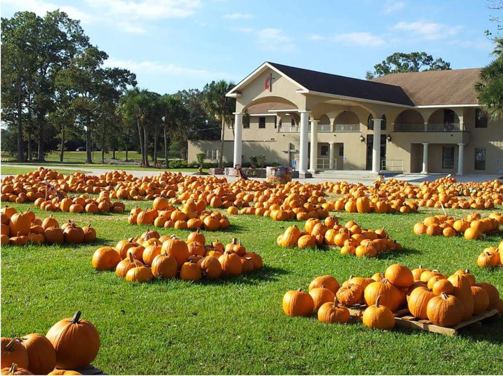 Baton Rouge Pumpkin Patch