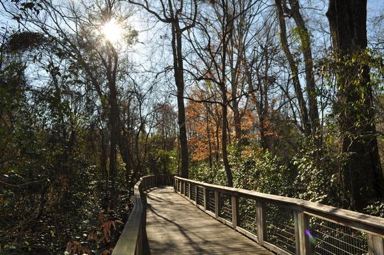 Bluebonnet Swamp Nature Center