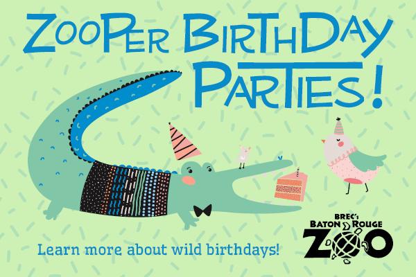 Zooper Birthday Party