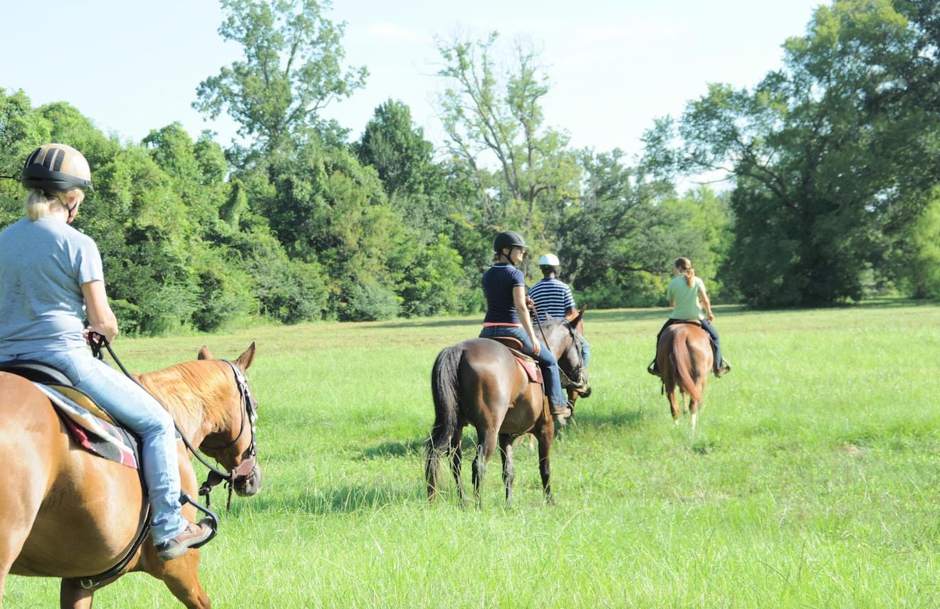 Farr Park Equestrian Center