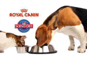 Royal Canin logo above photo of dog and cat eating from a bowl