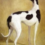 Painting showing a greyhound by Agasse