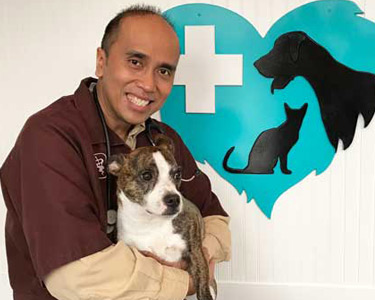 Dr. Cuesta holding cute brown and white dog