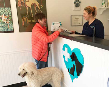 Customer with a large poodle is greeted by hospital team member