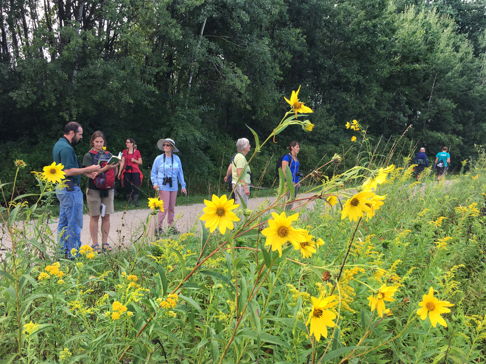 Tour group overlooking prairie.