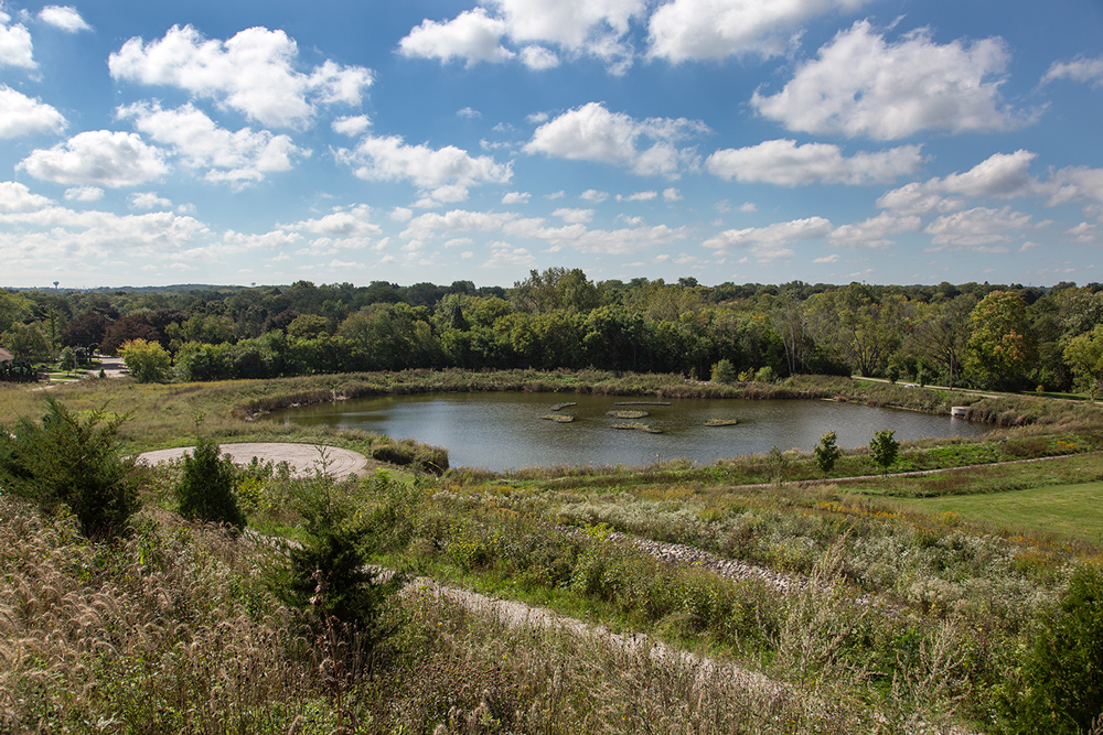 The pond viewed from the hilltop.