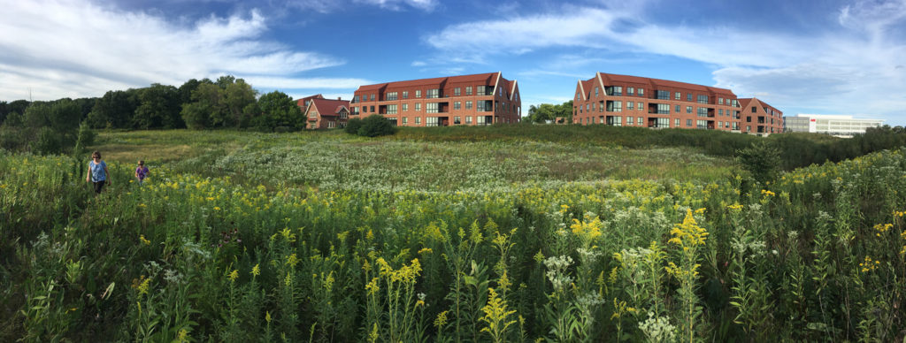 The Monarch Trail and Echelon Apartments