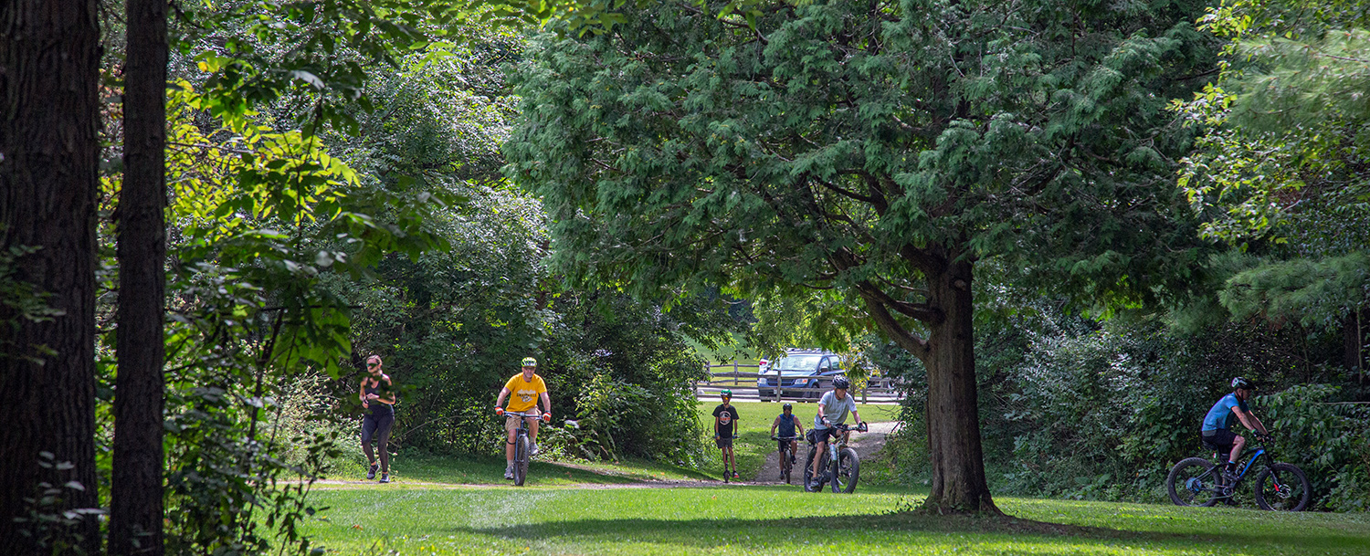 several mountain bikers and a jogger spread out across a field surrounded by woodlands