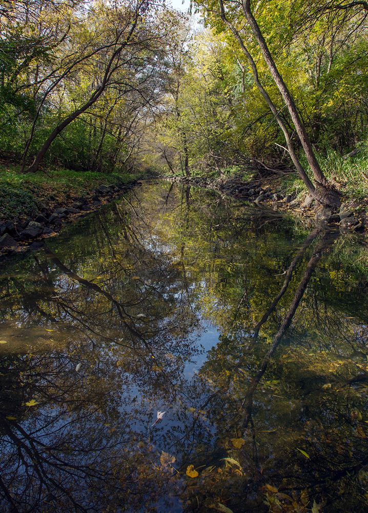 Wilson Creek, Wilson Park, Milwaukee