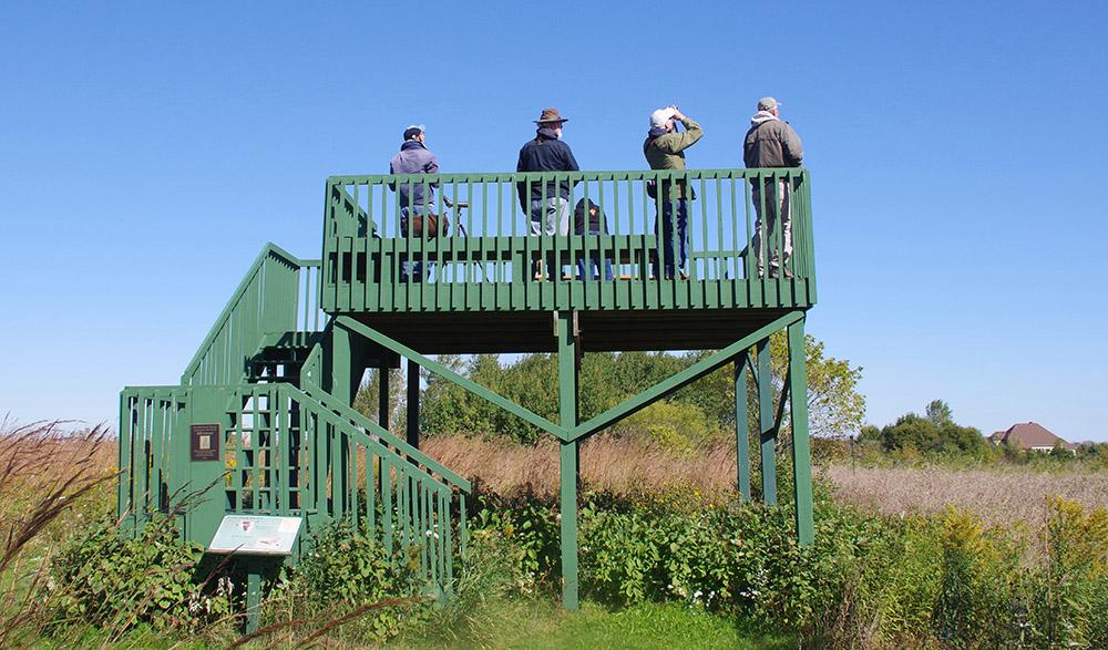 Observation tower.